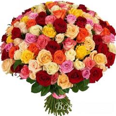 Роза 40-50 см. Цвет МИКС