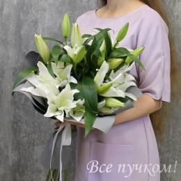 """Букет """"Белоснежная роскошь"""" из 5 лилий"""
