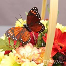 Бабочка на вставке в ассортименте