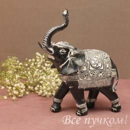 Слон в попоне черный