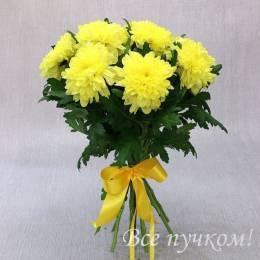 Букет#816 - 11 желтых  хризантем