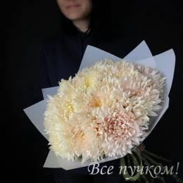 Букет ПОД ЗАКАЗ #811 Одноголовая хризантема