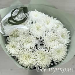 Букет#808 - Одноголовая белая хризантема -15 штук