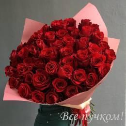 Букет#501 - 85 красных высоких роз