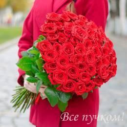 Букет#509 - 51 красная роза 60-70 см под ленту