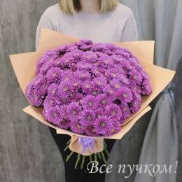 Букет#835 - 21 кустовая хризантема