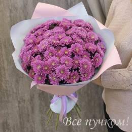 Букет#837 - 15 кустовых хризантем