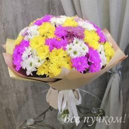 Букет#807 - 35 кустовых хризантем