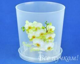 Кашпо д/орхидей 0,7л (прозр)-1 с поддоном