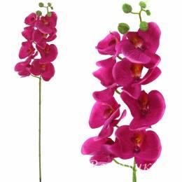 """Ветка """"Орхидея"""""""