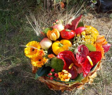 Красивая осень со Все пучком!